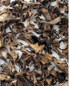 Herbsttrompeten, getrocknet