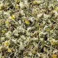 Daisies, dried - 100 g - bag