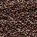 Paradise Grains - Guinea, Melegue, Malagette, Maniguette Pepper - 250 g - bag